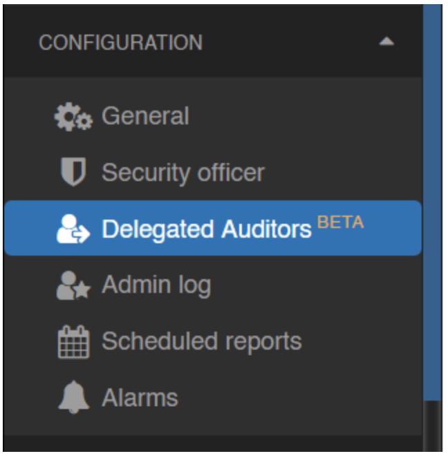 delegated auditor