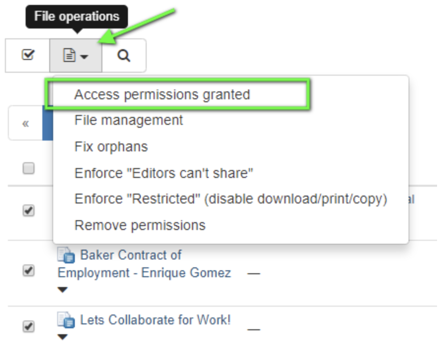 Click on the 'Files operation' button and then select 'Access permissions granted'.